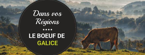Dans vos régions : le boeuf de Galice