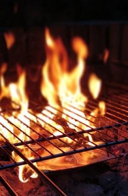 ASTUCES & CONSEILS - Cuisiner à la cheminée